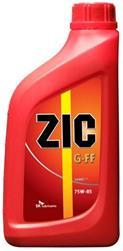 ZIC 137032